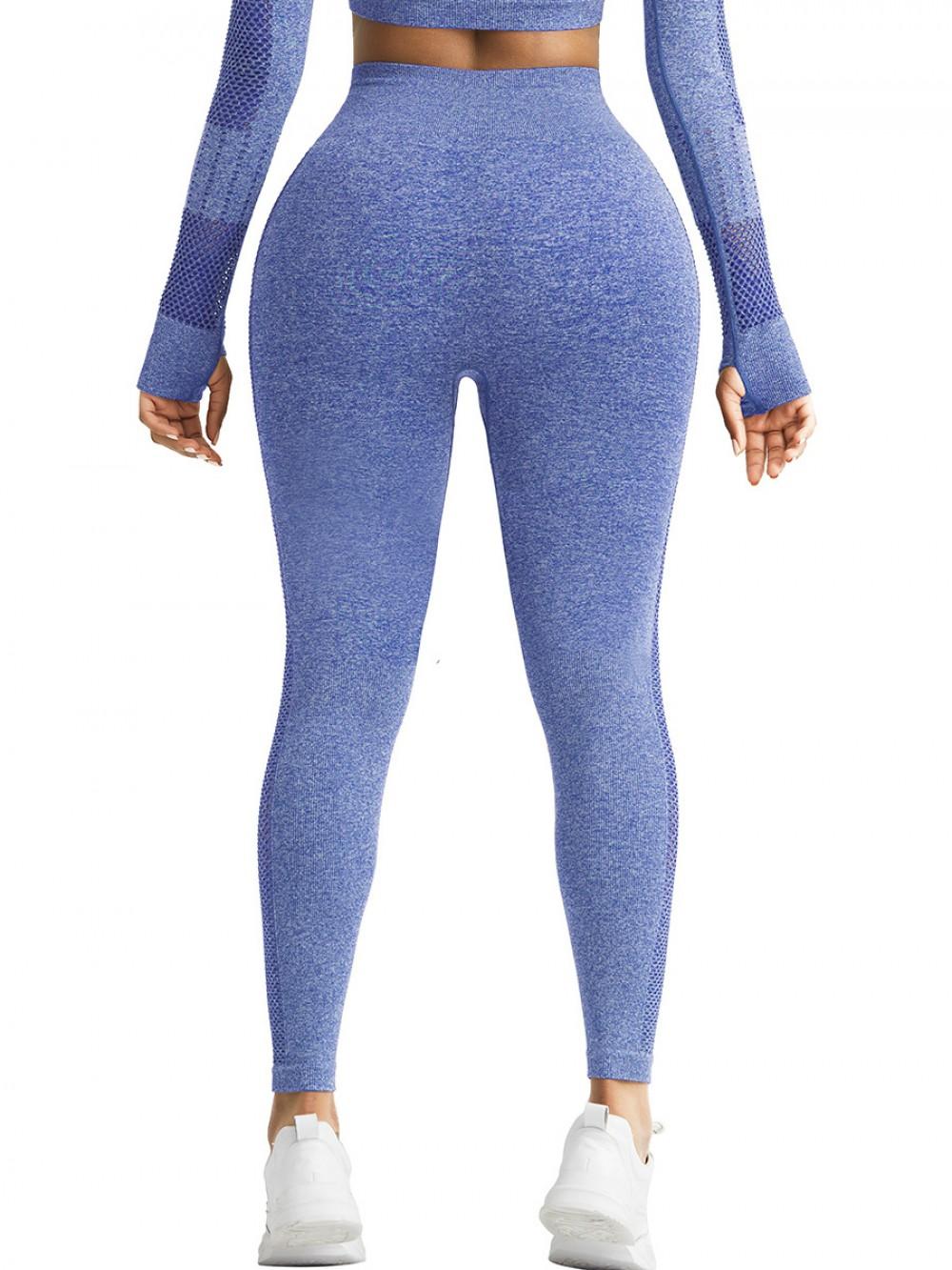 Ingenious Royal Blue Ankle Length Yoga Leggings Stripe Mesh Feminine Elegance